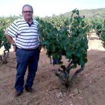 Vicente y sus viñas viejas