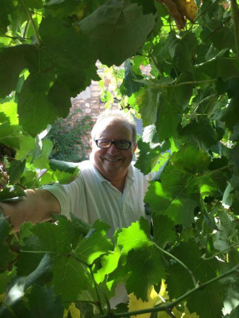 Vicente es feliz en su viña