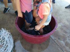 Niños pisando uva